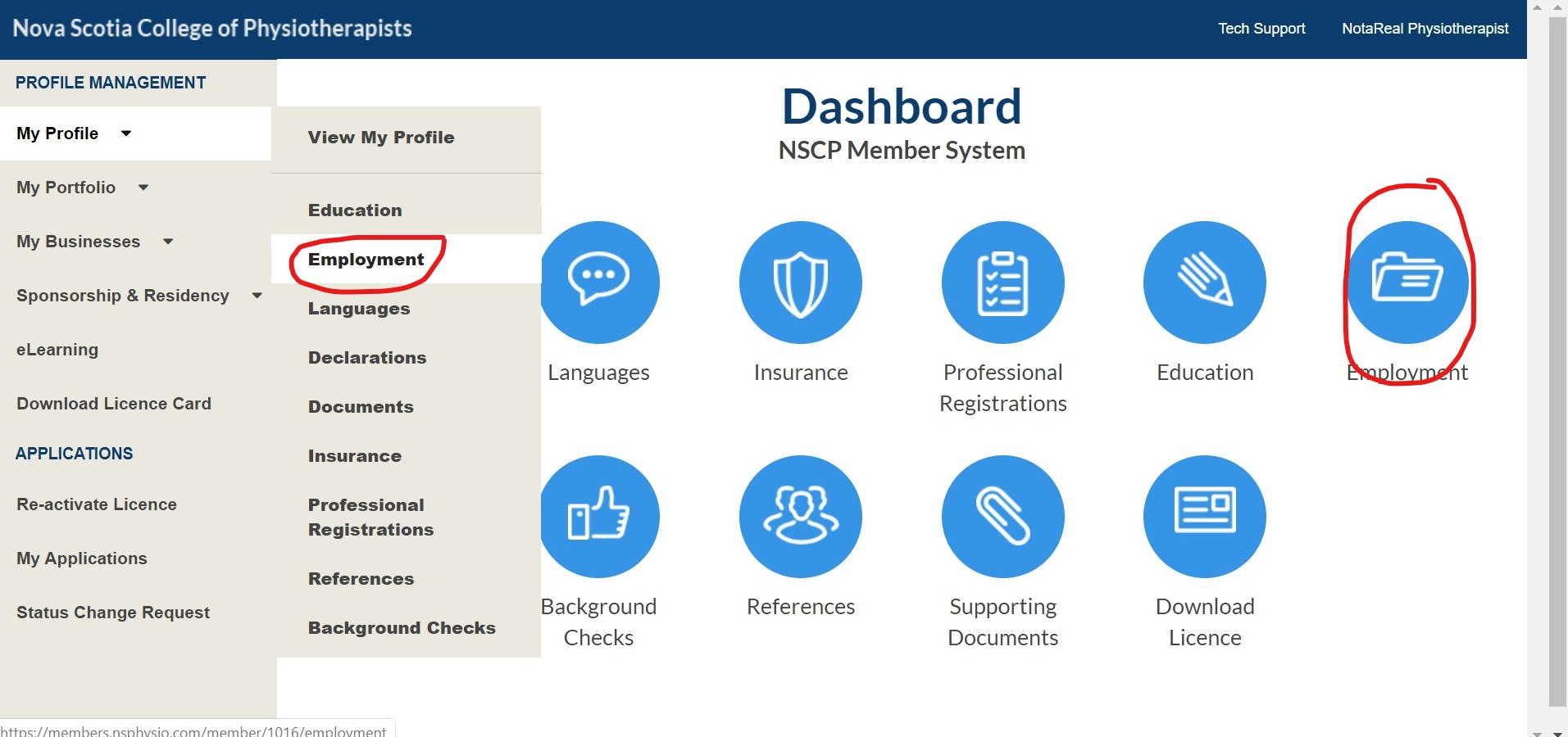 dashboard to employment
